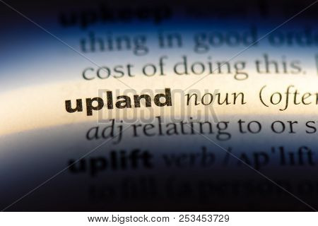 Upland Word In A Dictionary. Upland Concept.