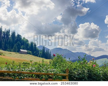 Mountain Landscape With Hayfield, Household Building And Flowers With Fence On A Foreground On Backg