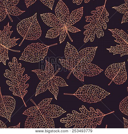 Vector Autumn Seamless Pattern With Oak, Poplar, Beech, Maple, Aspen And Horse Chestnut Leaves Outli