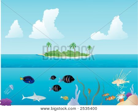 Various tropical fish swimming around on a reef and an island in the background poster