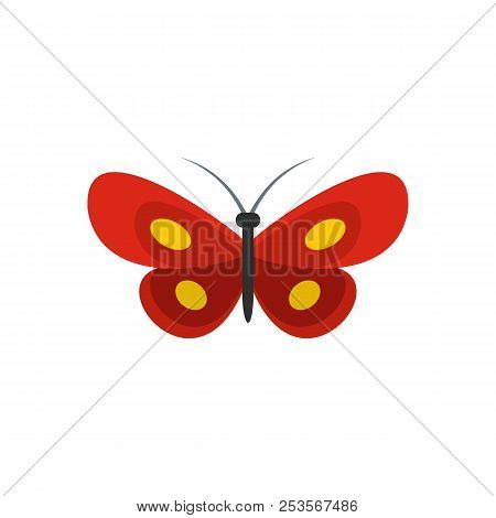 Tiny Butterfly Icon. Flat Illustration Of Tiny Butterfly  Icon Isolated On White Background