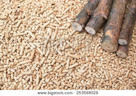 Coniferous Biomass - Wood And Pellets, Renewable Energy
