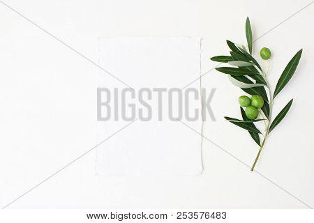 Styled Stock Photo. Feminine Wedding Desktop Mockup Scene With Green Olive Branch And White Empty Ve