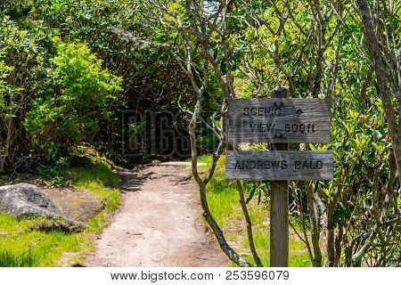 Sign To Scenic View On Andrews Bald In The Smokies