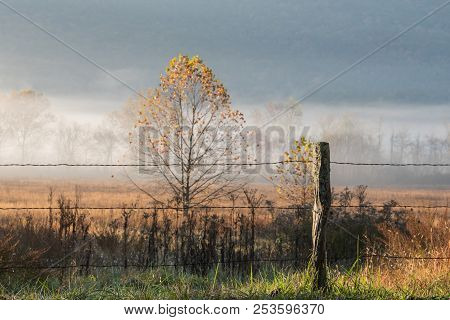 Old Wire Fence In Foggy Valley In Cades Cove