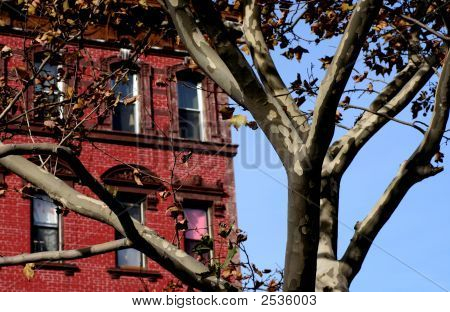 Brownstone