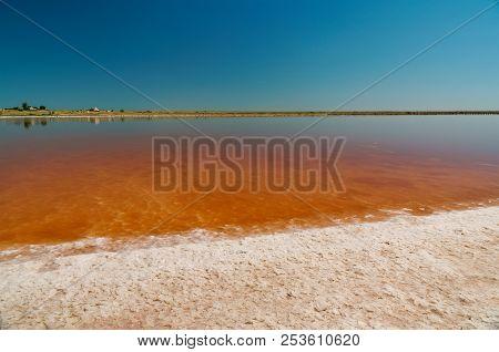 Closeup Brine And Salt Of Pink Lake, Colored By Microalgae Dunaliella Salina, Famous For Its Antioxi