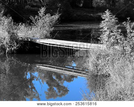 Boardwalk By The Pond Is Reflected In The Water