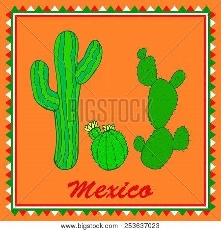 Three Green Cactuses On Orange Background. Isolated Colorful Sty