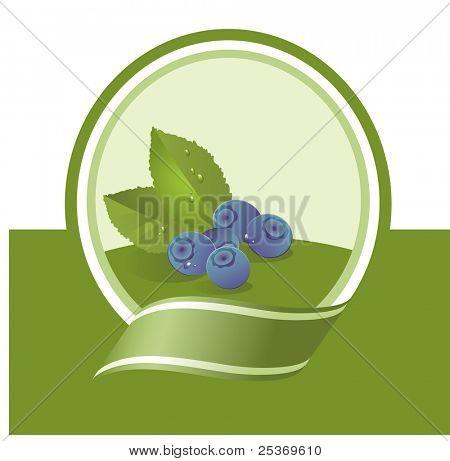 fresh bilberry illustration, vector label