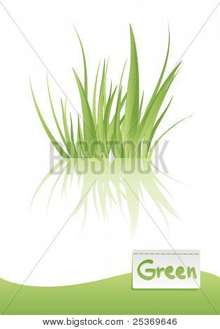 green grass vector illustration, related with ecology and green world concept