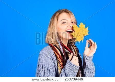 Autumn. Autumn Leaves. Autumn Sales. Sensual Woman With Maple Leaves. Autumn Mood. Woman With Autumn