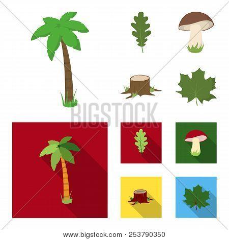 Oak Leaf, Mushroom, Stump, Maple Leaf.forest Set Collection Icons In Cartoon, Flat Style Vector Symb