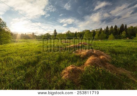 Summer Dawn On The Field. There Are Trees In The Background. In The Foreground Scattered Hay. Udmurt