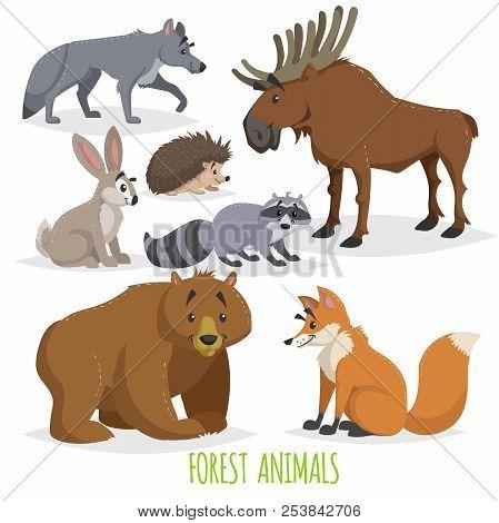 Cartoon Forest Animals Set. Wolf, Hedgehog, Moose, Hare, Raccoon, Bear And Fox. Funny Comic Creature
