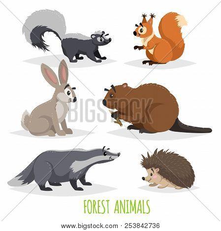 Cartoon Forest Animals Set. Skunk, Hedgehog, Hare, Squirrel, Badger And Beaver. Funny Comic Creature