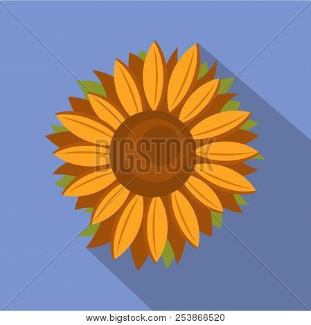 Tall Sunflower Icon. Flat Illustration Of Tall Sunflower Icon For Web