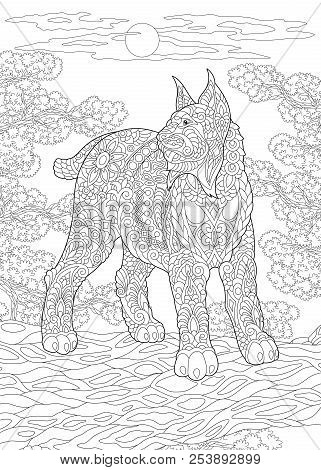 Coloring Page. Coloring Book. Colouring Picture With Wildcat. Antistress Freehand Sketch Drawing Wit