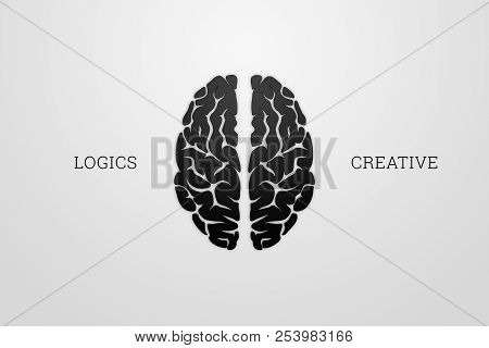 Illustration Of A Human Brain, Top View. Different Halves Of The Human Brain. The Creative Half And