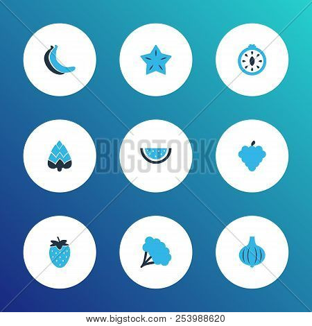 Food Icons Colored Set With Bunch, Starfruit, Banana And Other Tasty Elements. Isolated Vector Illus
