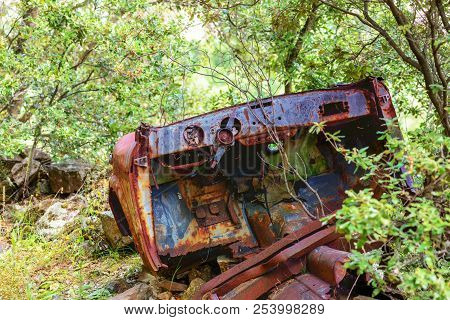 Rusty Car Wreck Abandoned In A Wood. Rusty Details Of The Interiors Wrapped By The Plants Of The For