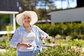 gardening, trimming and people concept - happy senior woman or gardener with hedge trimmer at summer garden poster