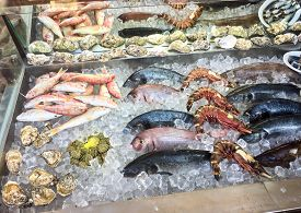 Fresh Fish On Ice Outside A Traditional Greek Restaurant In Crete