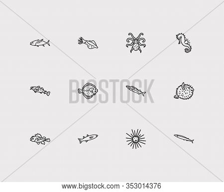 Seafood Icons Set. Cod Fish And Seafood Icons With Mullet, Sea Urchin And Turbot. Set Of Prickly For