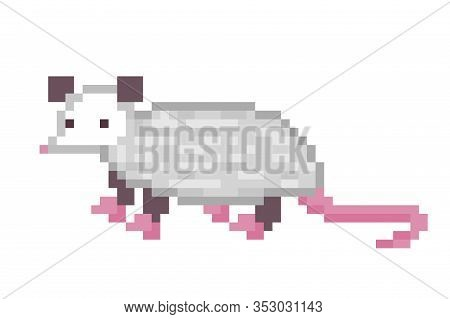 Cute Virginia Opossum Character, Pixel Art Icon Isolated On White Background. 8 Bit North American A