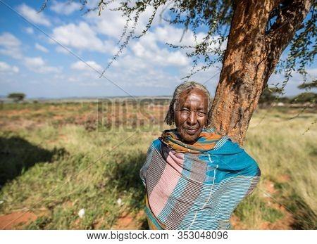 BORANA, ETHIOPIA-NOVEMBER 1, 2018: Portrait of an elderly indigenous woman in the Borana region of southern Ethiopia.