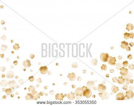 Gold Seashells Vector, Golden Pearl Bivalved Mollusks. Macro Scallop, Bivalve Pearl Shell, Marine Mo