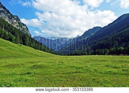 Alpine Pastures And Meadows In The Saminatal Alpine Valley, And In The Liechtenstein Alps Mountain M