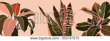 Art Collage Houseplant Leaves In A Minimal Trendy Style. Silhouette Of Sansevieria, Spathiphyllum An