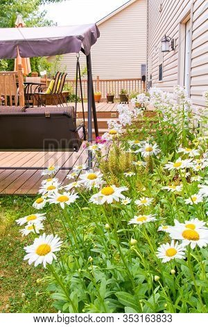 Patio And Garden With Flower Bed Of Family Home At Summer.