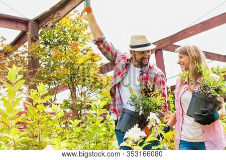 Portrait of mature gardeners smiling while talking and holding flower pot
