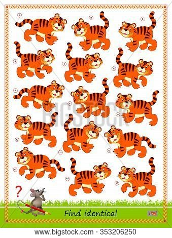 Logic Puzzle Game For Children And Adults. Find Two Identical Tigers. Printable Page For Kids Brain