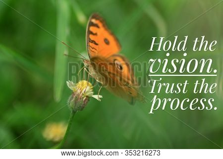 Inspirational Quote - Hold The Vision. Trust The Process. With Beautiful Orange Butterfly On Flower.