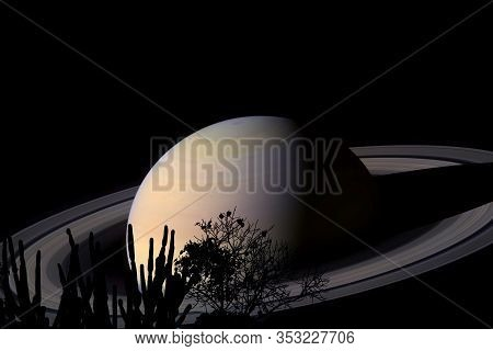 Rings And Saturn Planet Over Tree On The Field In Night Sky