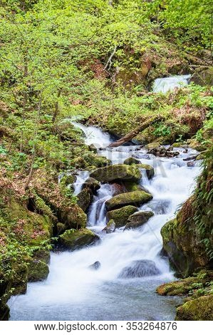 Rapid Water Stream In The Forest. Powerful Flow Among The Mossy Rocks. Beautiful Nature Scenery In S