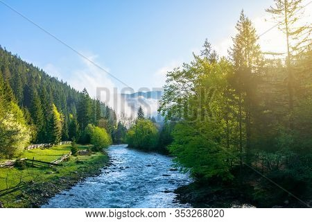 Mountain River On A Misty Sunrise. Amazing Nature Scenery With Fog Rolling Above The Trees In Fresh