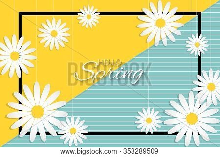 Floral Rectangle Frame Of Spring Frame With White Flowers And Hello Spring Text On Two Color Backgro