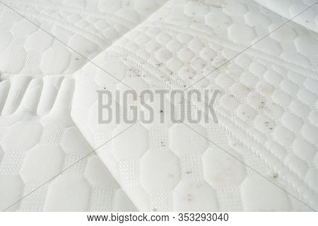 Mildew On A Mattress. Black Stains On A White Fabric.