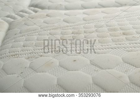 Mold And Dirt On A Bed. Mattress With Spots Of Mildew Spores.