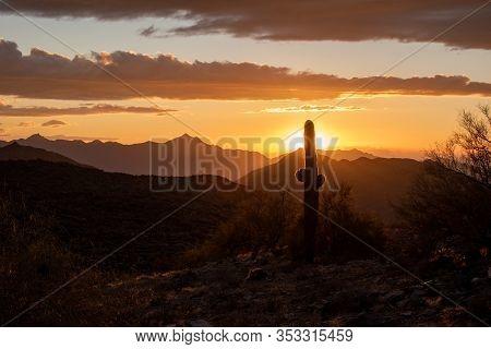 Beautiful Orange Sun Setting Behind A Saguaro Cactus