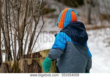 A Toddler On A Nature Trail In The Winter Is Investigating A Tree Stump. He Wears A Warm Winter Coat