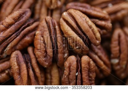 Pecan Nut Close-up. Pecan Macro Texture. Useful Products. Nutrition Ingredient. Low Carbohydrate Nut