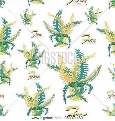 Fern Background. Fern Leaves. Vector Pattern With Houseplant. Big Fern Leaves In A Flower Pot. Exoti