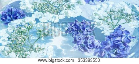 Lilac And Viburnum Flowers Lying In Clear Blue Water On A Bright Sunny Day. Small White And Lilac Fl