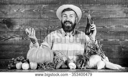 Organic Horticulture Concept. Grow Organic Crops. Homegrown Organic Food. Man With Beard Wooden Back