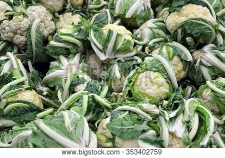 Whole Green Ripe  Cauliflower Background - Many Raw Cauliflowers At Food Market For Sale, Healthy Ve